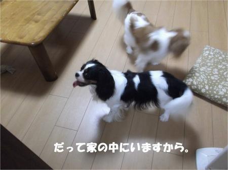 09_convert_20130822160730.jpg