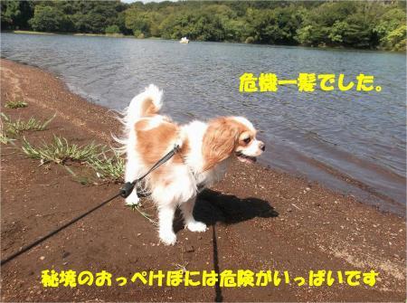 09_convert_20130923133431.jpg
