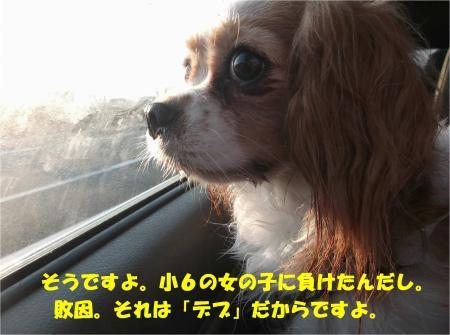 09_convert_20130925175328.jpg