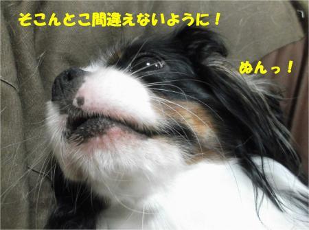 09_convert_20130927185529.jpg