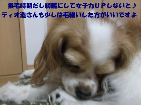 09_convert_20131002182731.jpg