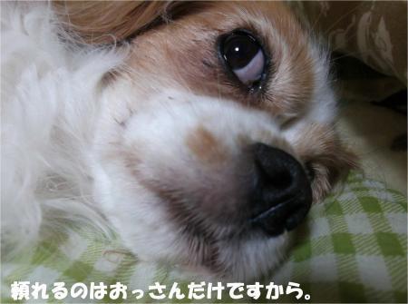 09_convert_20131015170856.jpg