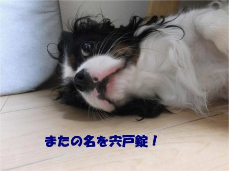 09_convert_20131017195716.jpg