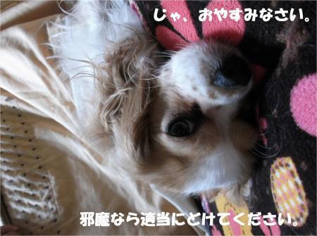 09_convert_20131030165450.jpg