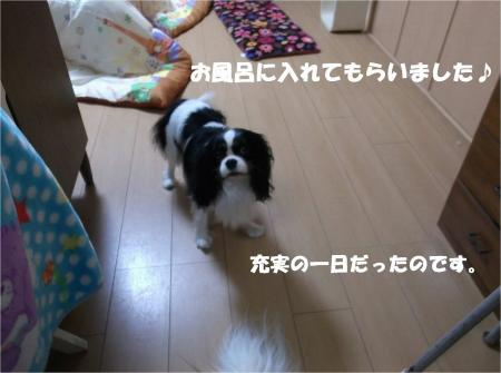 09_convert_20131209170646.jpg