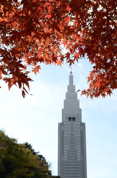 新宿寸景-1_R