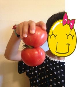トマト雪ダルマ