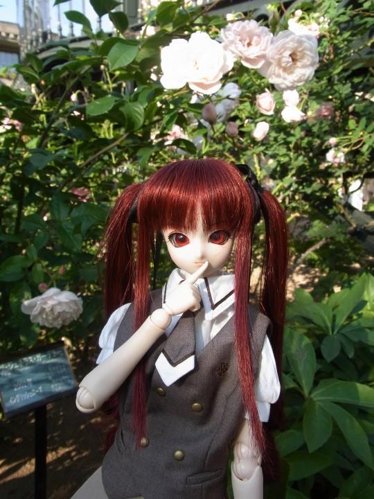 ミカヅキ 白い恋人パーク11