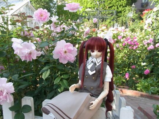 ミカヅキ 白い恋人パーク12