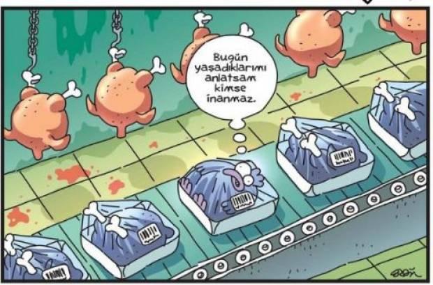 en-komik-karikaturler7.jpg