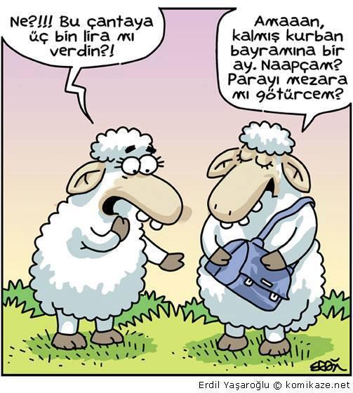 kurban-bayrami-karikaturbayrabayraa.jpg