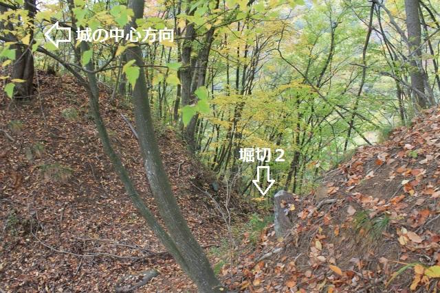 IMG_8567.jpg