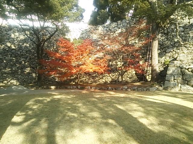 131204 姫路城①