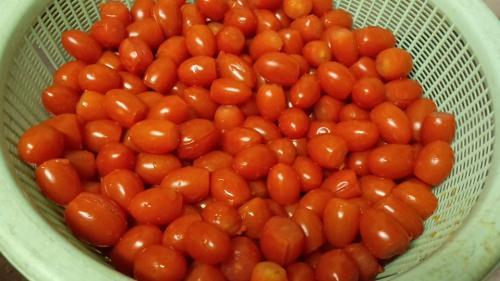 2013-7トマトソース2