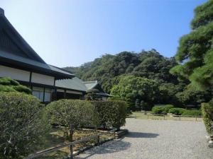 徳島城城山