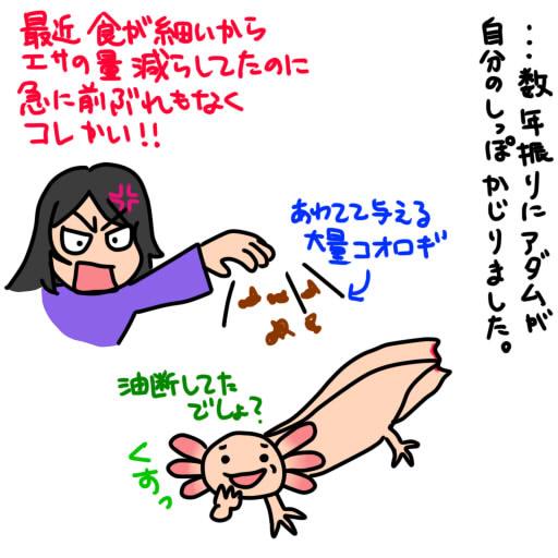 20140122しっぽかじり事件再び!