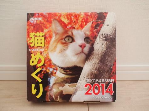 P9221793urabanashi.jpg