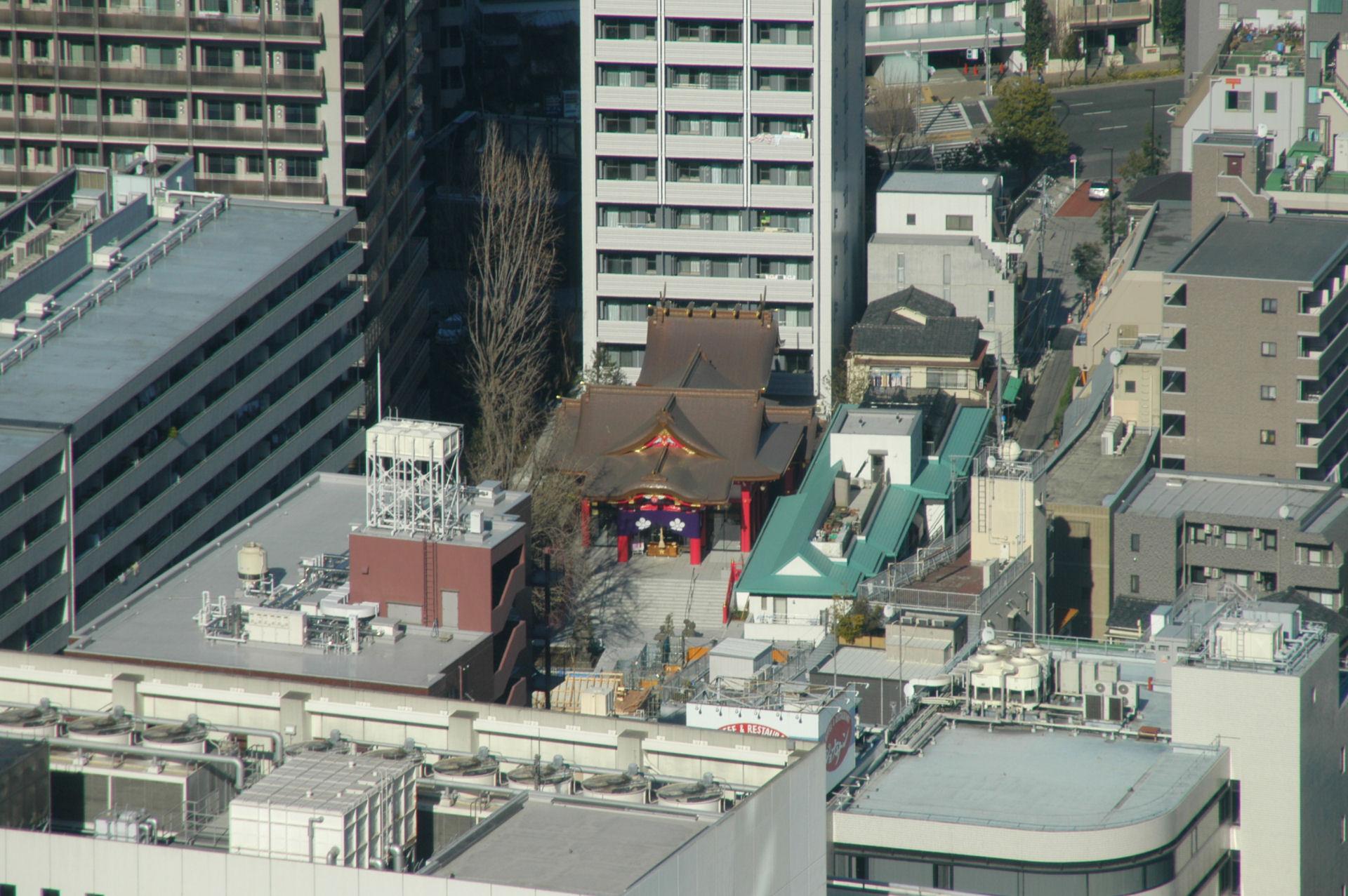 shinjuku14010078.jpg