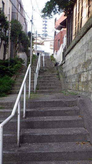 荒木町 階段を降りて上を望む