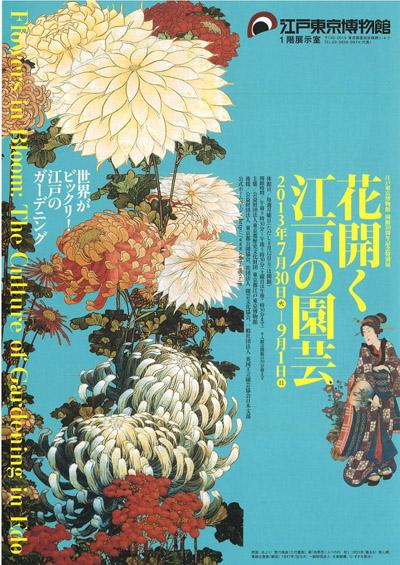花開く江戸の園芸チラシ