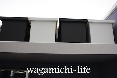 IMG_9599.jpg