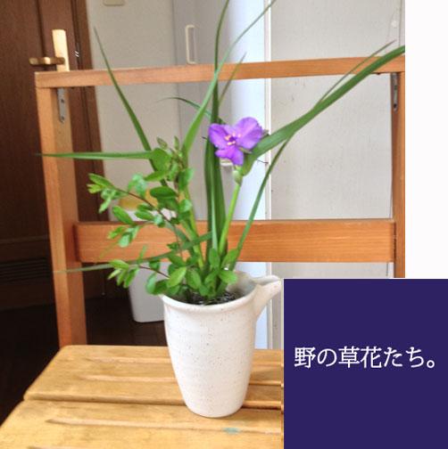 IMG_3047.jpg