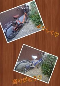 PhotoGrid_1382840482744.jpg