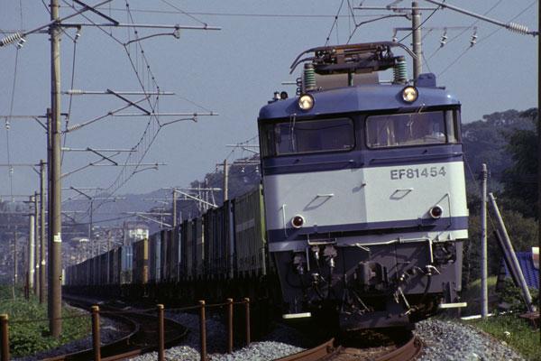 EF81454