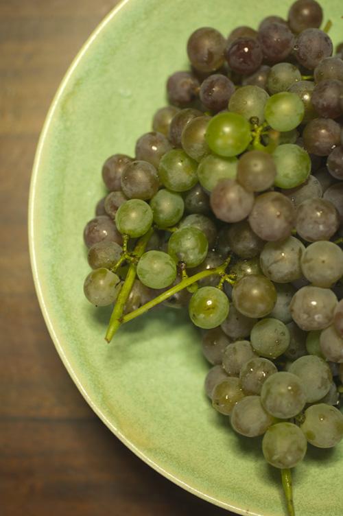 grape13_9_9_6.jpg