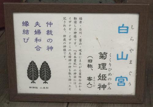 hiyoshi_sirayama.jpg