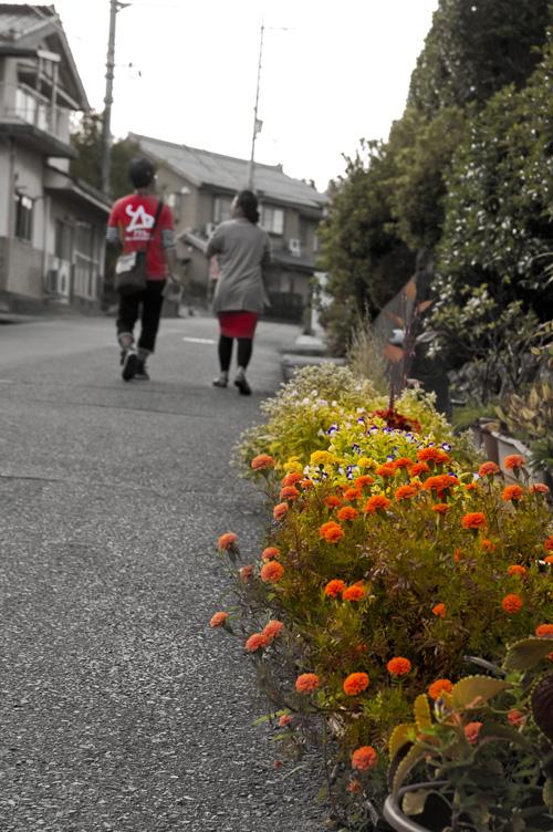 shigaraki_10_14_fm.jpg