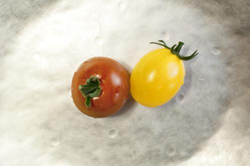 tomato_13_7_20_1.jpg