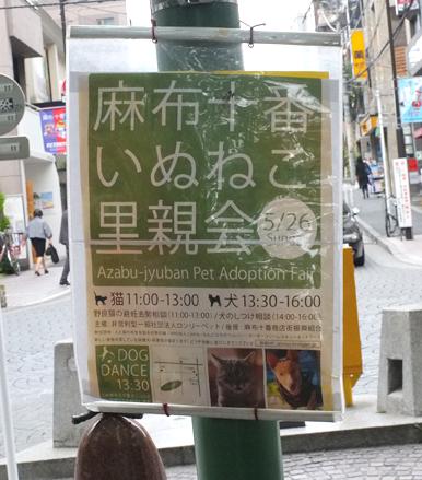 麻布十番いぬねこ里親会のポスター