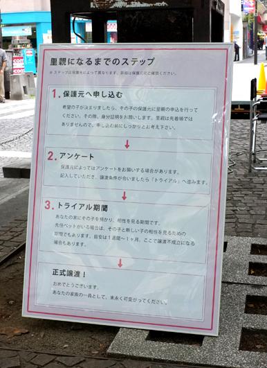 azabu_satooya3_2013_5_31.jpg
