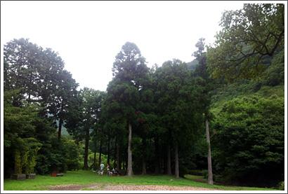 20130803_17.jpg