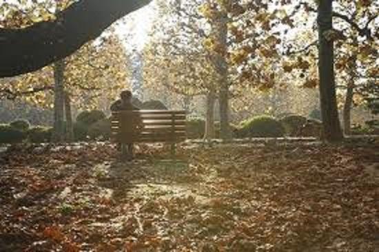 公園のベンチと枯葉200