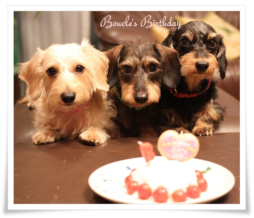 Boucles_4th_Bday5