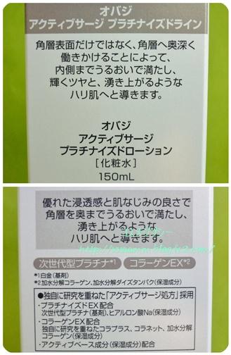P1080626-vert.jpg