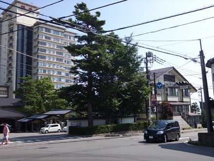 20130811_kusatu.jpg