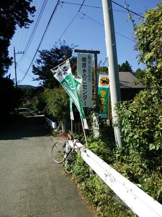 20131013_kinoko.jpg