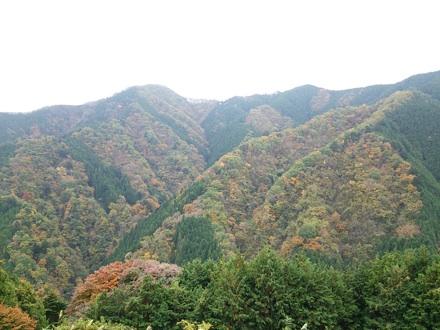 20131109_kazahari4.jpg