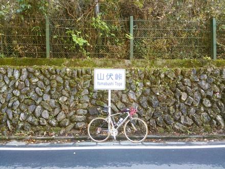 20131116_yamabusi.jpg