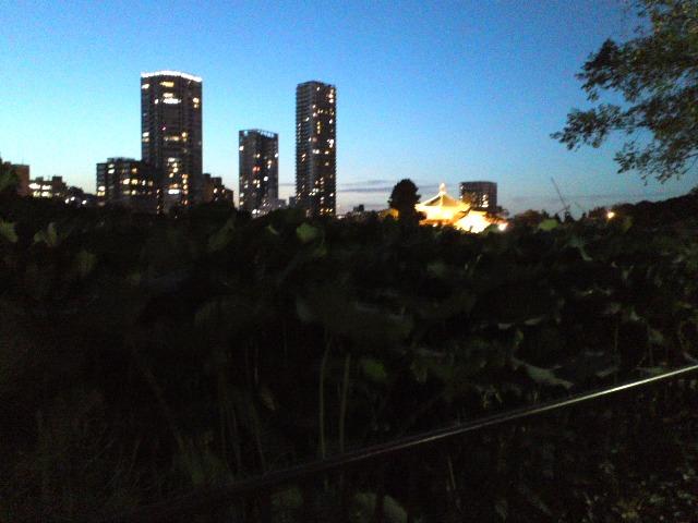 Shinobazu0927W4.jpg