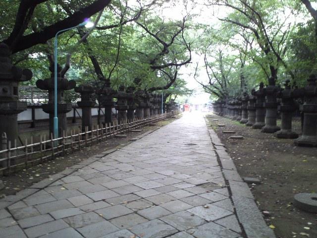 UToshoguWeb1.jpg