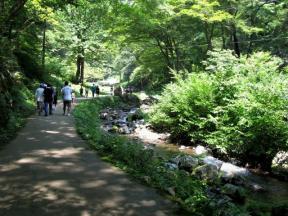 再び渓流沿いを歩く