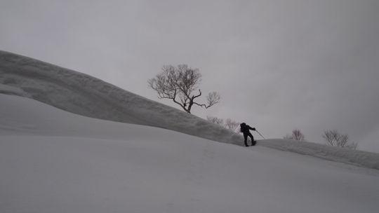雪庇を越える
