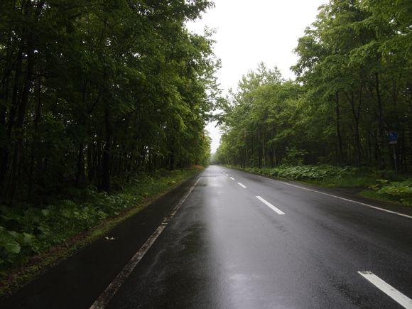 雨の支笏湖道路