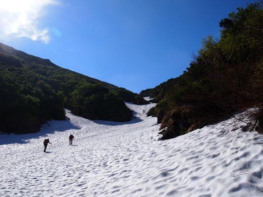 沢を埋めた雪
