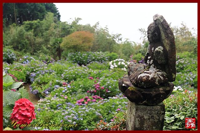s-20130622-杉岳山大聖寺0009