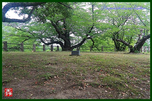 s-20130728-福岡城0016